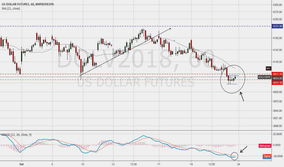 DOLV2018: Dollar - DOLV18