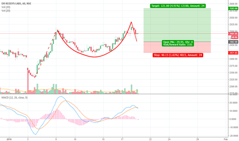 DRREDDY: DRREDDY on a Cup and Handle