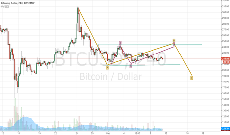 BTCUSD: Bitcoin will back to $236 or $250