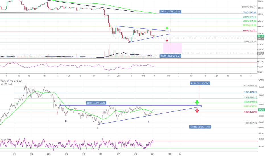 BTCUSD: BTC/GOLD - Let's zoom out and see where to buy or go short!