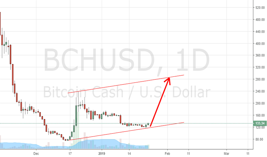 BCHUSD: BCH USD
