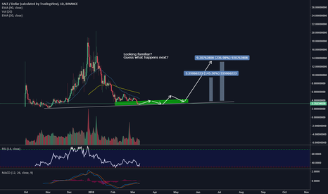 SALTUSD: SALT/USD New Market cycle 200%