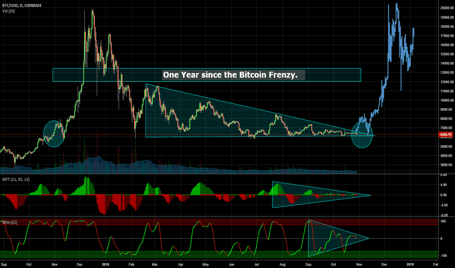 BTCUSD: One Year since the Bitcoin Frenzy