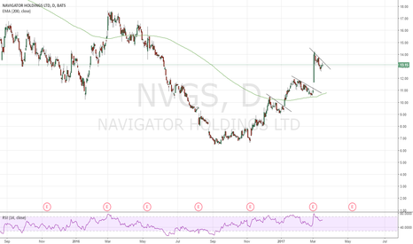 NVGS: Potential logs