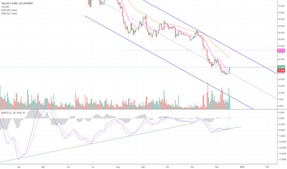 LTCUSD: The Bulls Are Showing Up, in Litecoin! (LTC)