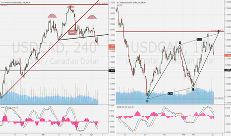 USDCAD: USD/CAD 4H compare day