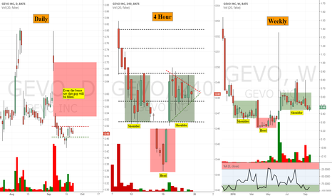 GEVO: Another GEVO view from multiple time perspectives