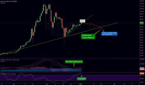 BTCUSD: Chinese New Year correction?