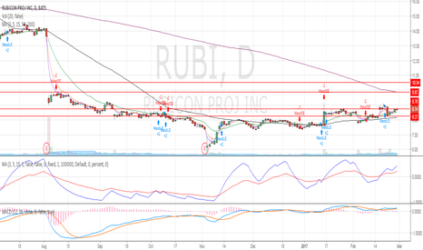 RUBI: Monitor for a breakout after rebounded off the US$8.27