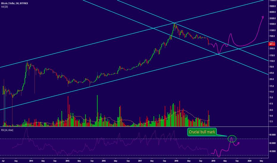 BTCUSD: BTC/USD long term