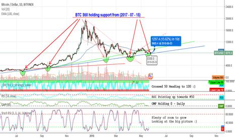 BTCUSD: Bitcoin Holding support