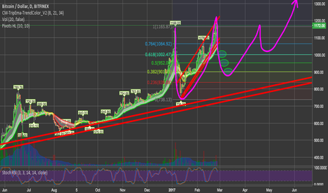 BTCUSD: #Bitcoin Consolidating For Next Leg Up This Massive Bull Trend