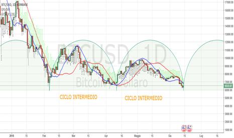BTCUSD: Bitcoin Daily: probabile partenza ciclo intermedio