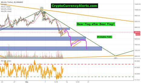 BTCUSDT: Quick Bitcoin Update: Bear Flag after bear flag after bear flag!