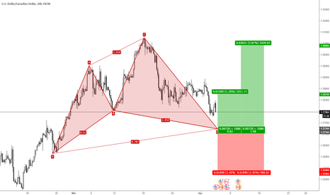 USDCAD: USDCAD - Bullish Cypher a favore di trend
