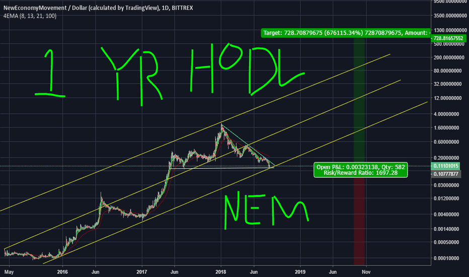 XEMUSD: Get Your Bags Filled NEM(XEM) IMO