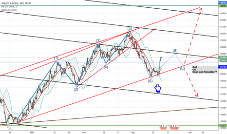 XAUUSD: Another Bull In the Long Run?