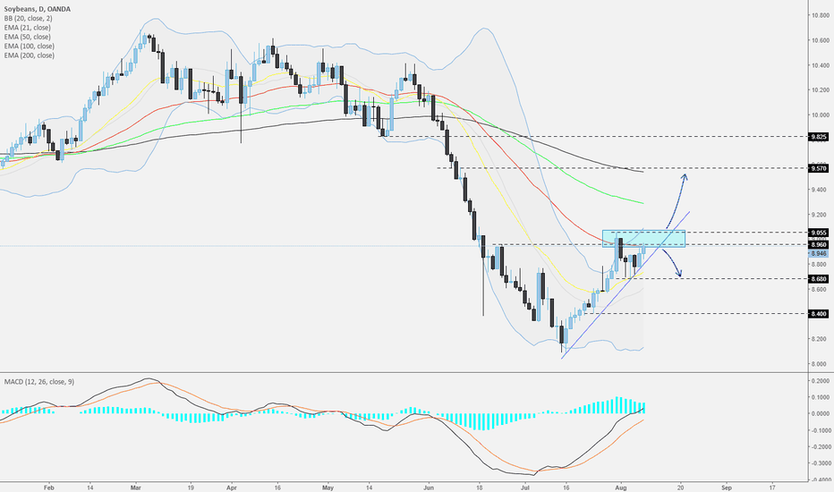 SOYBNUSD: Soybean - Daily - Near the strong area of resistance.