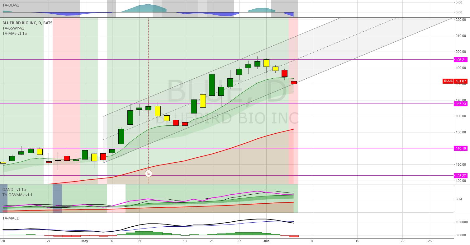(D): MACD bearish. OBV slowly decreasing.