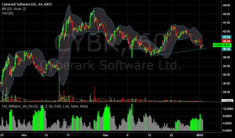 CYBR: CYBR 3