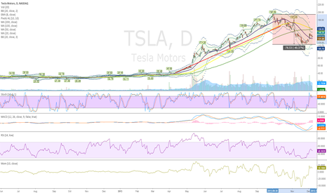 TSLA: Started TSLA relong