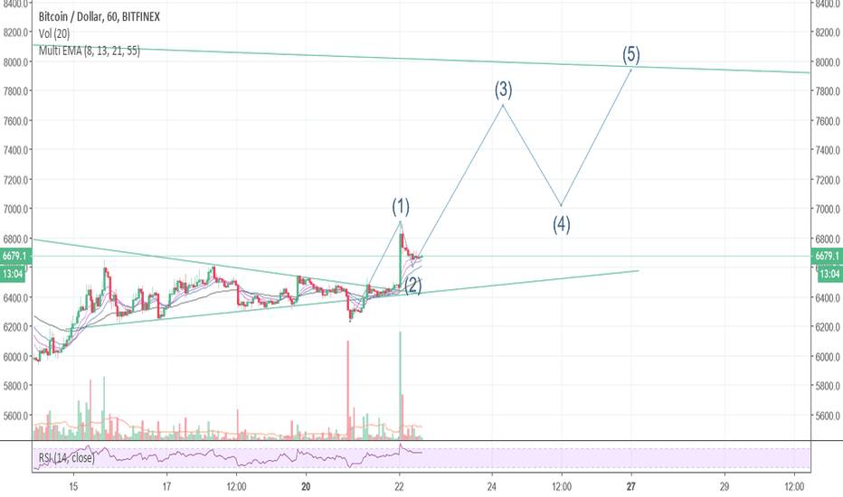 BTCUSD: Possible elliot wave in formation, wave 1 and 2 complete
