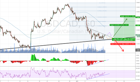 USDCAD: USDCAD Long on Divergence, TCT, STRONG Support