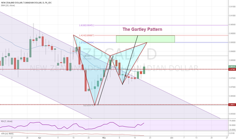 NZDCAD: The Gartley Pattern