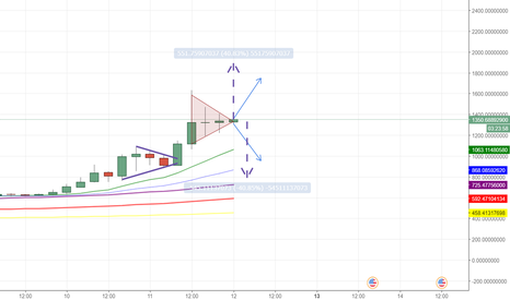 BCHUSD: Bitcoin Cash ready for 40% correction or reversal