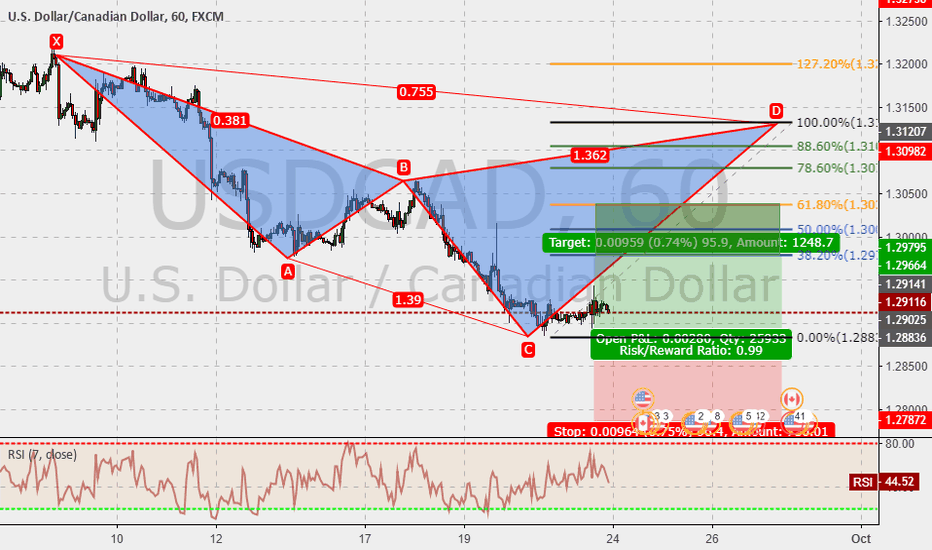 USDCAD: USDCAD 60m : Cypher in the make