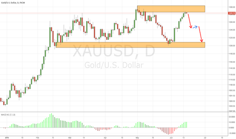 XAUUSD: Gold daily chart reach supply zone