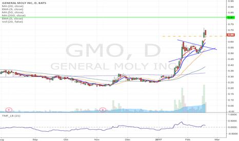 GMO: GMO- Potenital flag formation Long