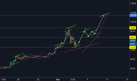 LTCUSD: LTCUSD rising wave structure...