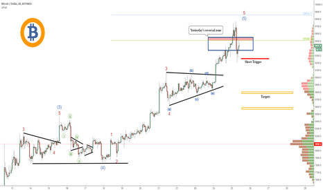 BTCUSD: Bitcoin (BTC): Hunting For The Top