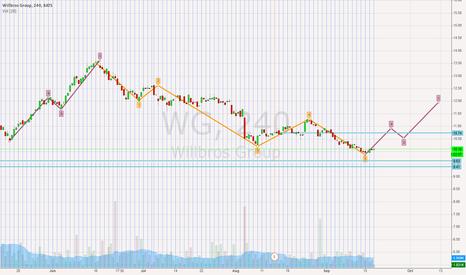 WG: Potential Elliot Wave Retracement