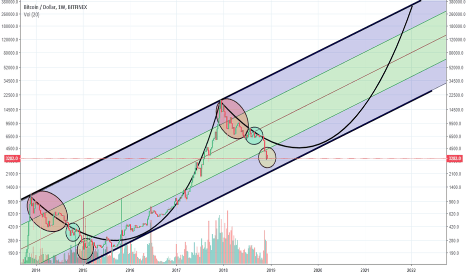 BTCUSD: New Long-Term View (next peak 330k)