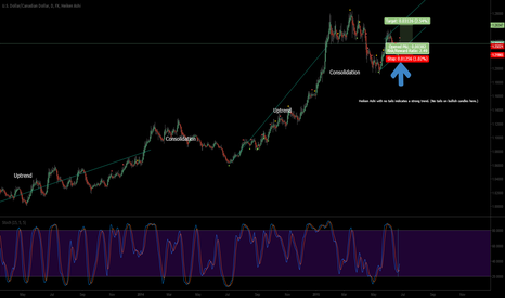 USDCAD: USDCAD Long. Bounce off Support + Oversold. Daily Chart.