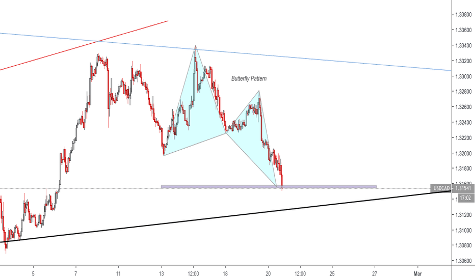 USDCAD: Butterfly Pattern on USDCAD