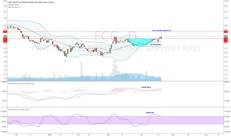 FCG: FCG- Cup n Handle Target $5.26