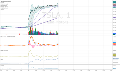 TSLA: Tesla
