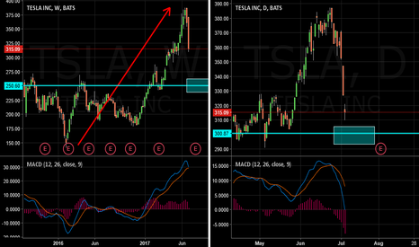 TSLA: Tesla Motors :TSLA set for correction towards 250?