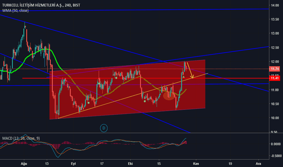 TCELL: #TCELL