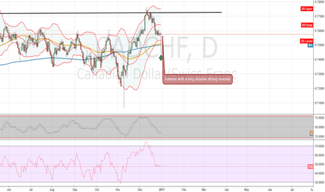 CADCHF: time to ride the bull