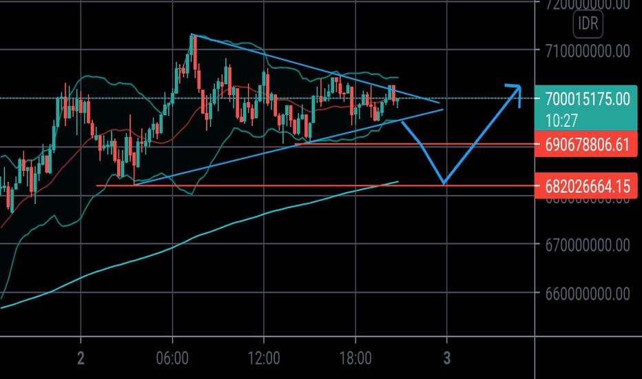tradingview btc idr)