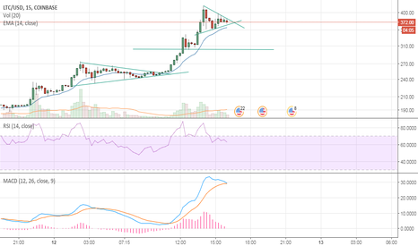 LTCUSD: LTC HUGE Gains, another bull flag?!