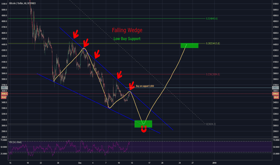 BTCUSD: The Falling Wedge, Inevitable Bounce