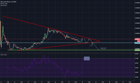 BTGBTC:  Bearish symmetrical triangle BTGBTC