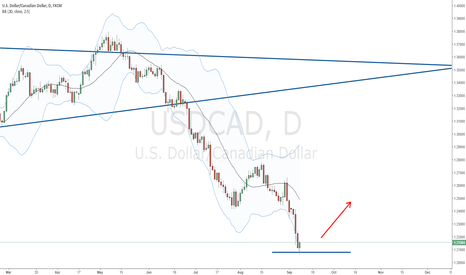USDCAD: Extended down move at an end at 50% fib level?