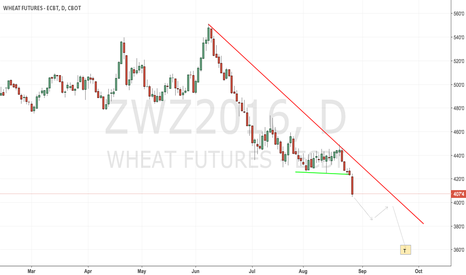 ZWZ2016: CBoT wheat waiting for the bottom