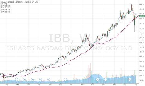 IBB: Get Ready For an Amazing Rally in Biotech-Price Move is Imminent